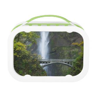 Multnomah Falls, Oregon Lunch Box