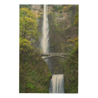 Multnomah Falls, Oregon Wood Wall Art