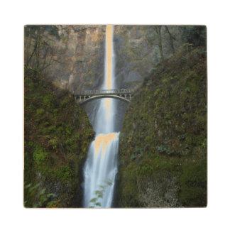 Multnomah Falls Wood Coaster