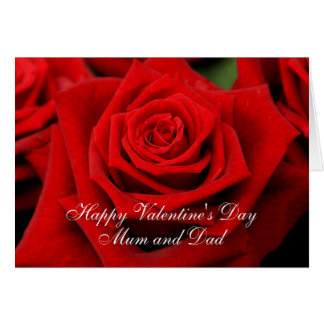 Mum and Dad  Happy Valentine's Day Roses Card