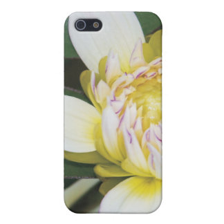 mum case cases for iPhone 5