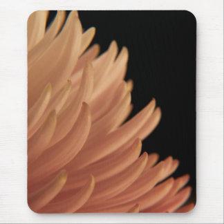 Mum Chrysanthemum Pink Flower Mousepad