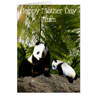 Mummy And Baby Panda, Mother Day Card