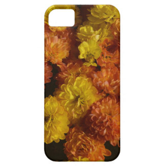 Mums for Fall Barely There iPhone 5 Case