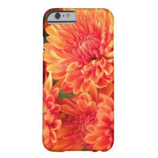 Mums in Bloom Barely There iPhone 6 Case