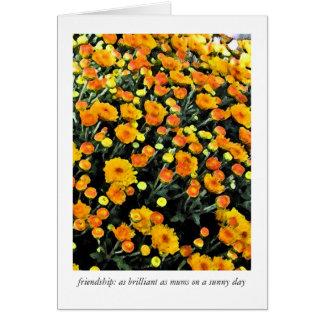 Mums (No. 0732) Card