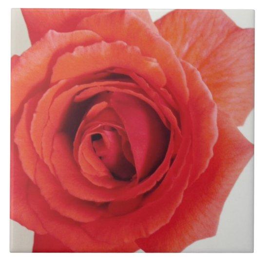 Mum's Red Rose Tile