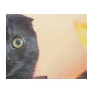 Munchkin Cat Wood Canvas