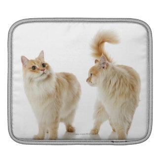 Munchkin cats iPad sleeve