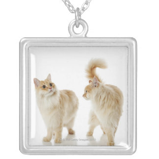 Munchkin cats silver plated necklace