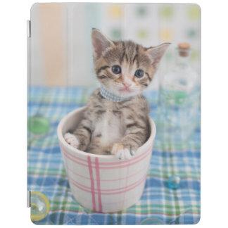 Munchkin Kitten With Pretty Ribbon iPad Cover