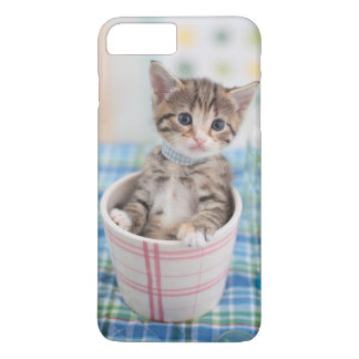 Munchkin Kitten With Pretty Ribbon iPhone 8 Plus/7 Plus Case