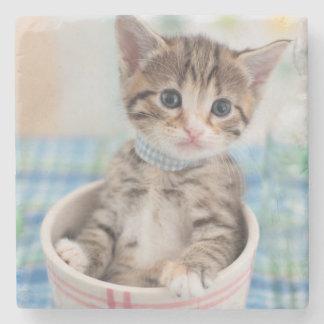 Munchkin Kitten With Pretty Ribbon Stone Coaster