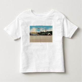 Municipal Airport Landing Field Scene Tshirt