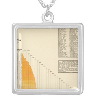 Municipal net debt silver plated necklace