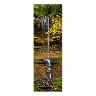 Munising Falls, Michigan Pack Of Skinny Business Cards