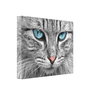 Mural, ice-blue cat eyes stretched canvas prints