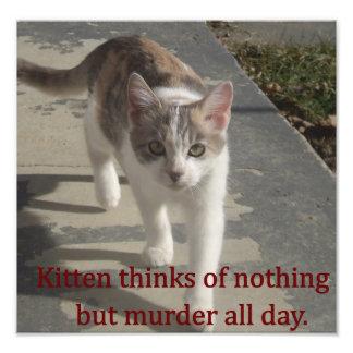 Murder Kitten Photograph