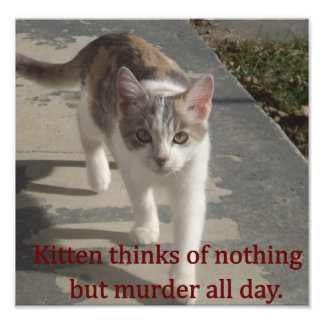 Murder Kitten Photo Print