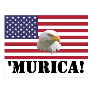 Murica Eagle Postcard
