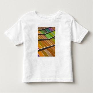 MUSAC, contemporary art museum 3 Toddler T-Shirt