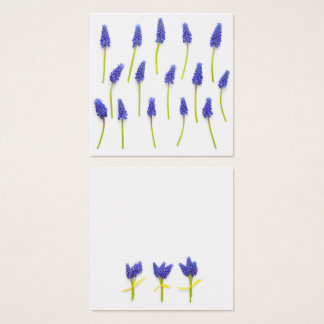Muscari Flowers Isolated on White Background Square Business Card
