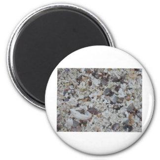 Muscheln von Strand 6 Cm Round Magnet