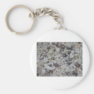 Muscheln von Strand Basic Round Button Key Ring