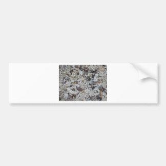 Muscheln von Strand Bumper Sticker