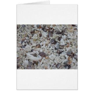 Muscheln von Strand Greeting Card
