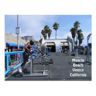 Muscle Beach Venice Postcard! Postcard