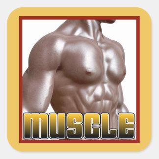 MUSCLE Gear Square Sticker