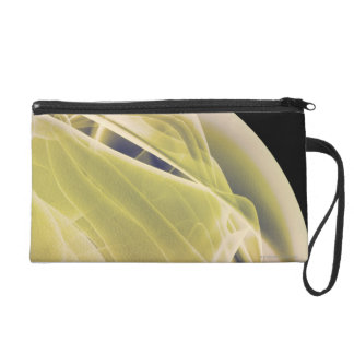 Muscles of the Shoulder Wristlet Clutch