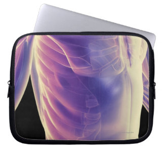 Muscles of the Trunk 3 Laptop Sleeve
