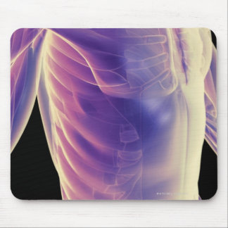 Muscles of the Trunk 3 Mouse Pad