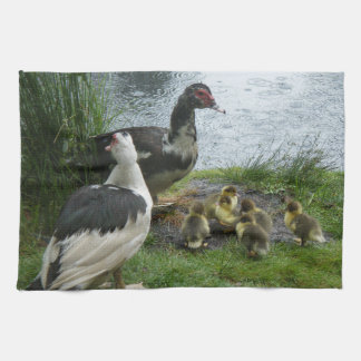 Muscovy Duck Family Kitchen Towel