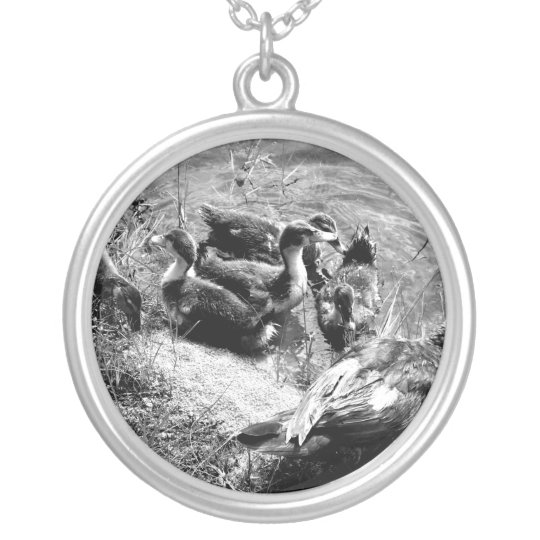 Muscovy duck hen and ducklings black and white silver plated necklace