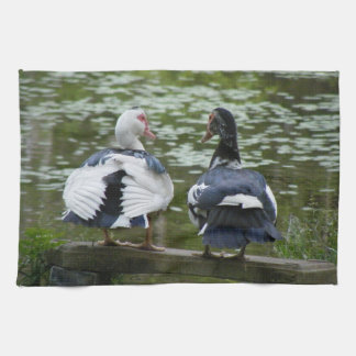 Muscovy Ducks Sitting On An Ornament Kitchen Towel