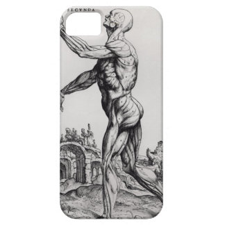 Musculature Structure of a Man (b/w neg & print) iPhone 5 Case
