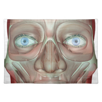 Musculoskeleton of the Face 3 Placemat