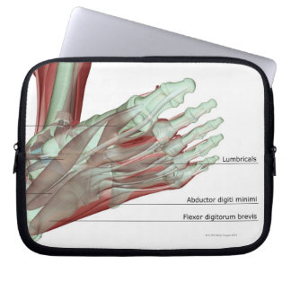 Musculoskeleton of the Foot Laptop Sleeve