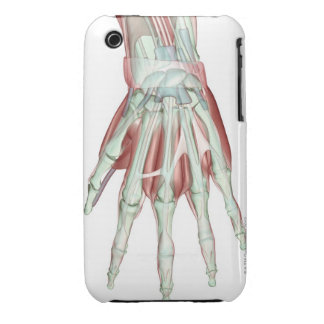 Musculoskeleton of the Hand 2 iPhone 3 Cover