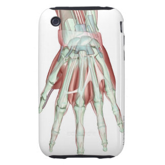 Musculoskeleton of the Hand 2 iPhone 3 Tough Case