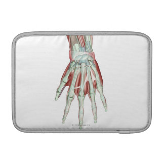Musculoskeleton of the Hand 2 MacBook Sleeve