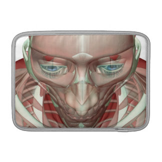 Musculoskeleton of the Head and Neck Sleeve For MacBook Air