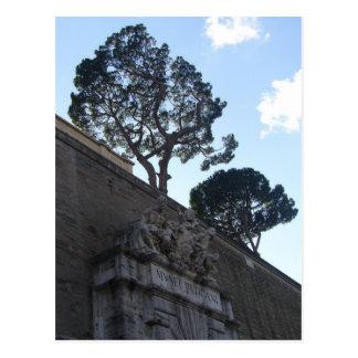musei vatacani postcard