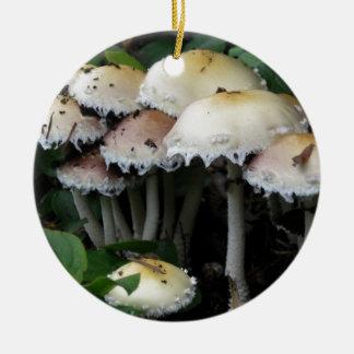 Mushroom Cluster - Photograph Round Ceramic Decoration