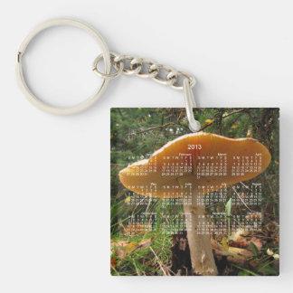 Mushroom Giant; 2013 Calendar Single-Sided Square Acrylic Key Ring