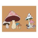 Mushroom Grouping Post Card