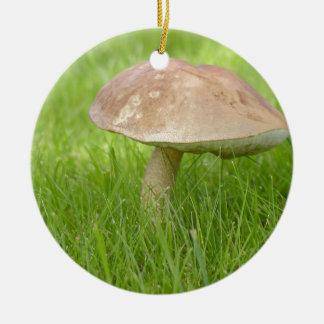 Mushroom Meadow Field Round Ceramic Decoration